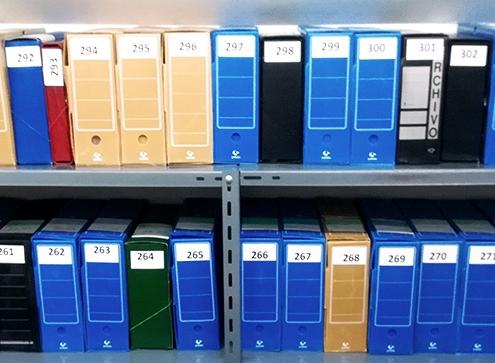 Organización y descripción del archivo histórico de A Pastoriza